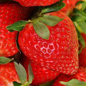 Morango - Frutas Vermelhas - Atividade Antioxidante